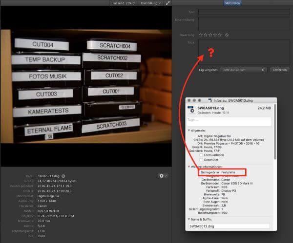 Da fehlt noch was: Es wäre schick, wenn Kyno bei Fotos auch die Keywords einlesen würde, die mit den Dateien gespeichert sind.