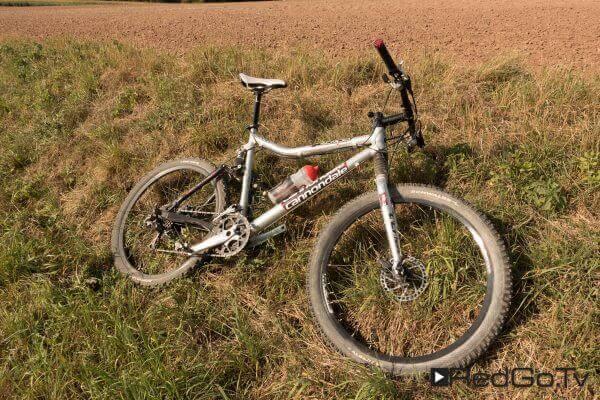 Mountain Bike in der Wiese